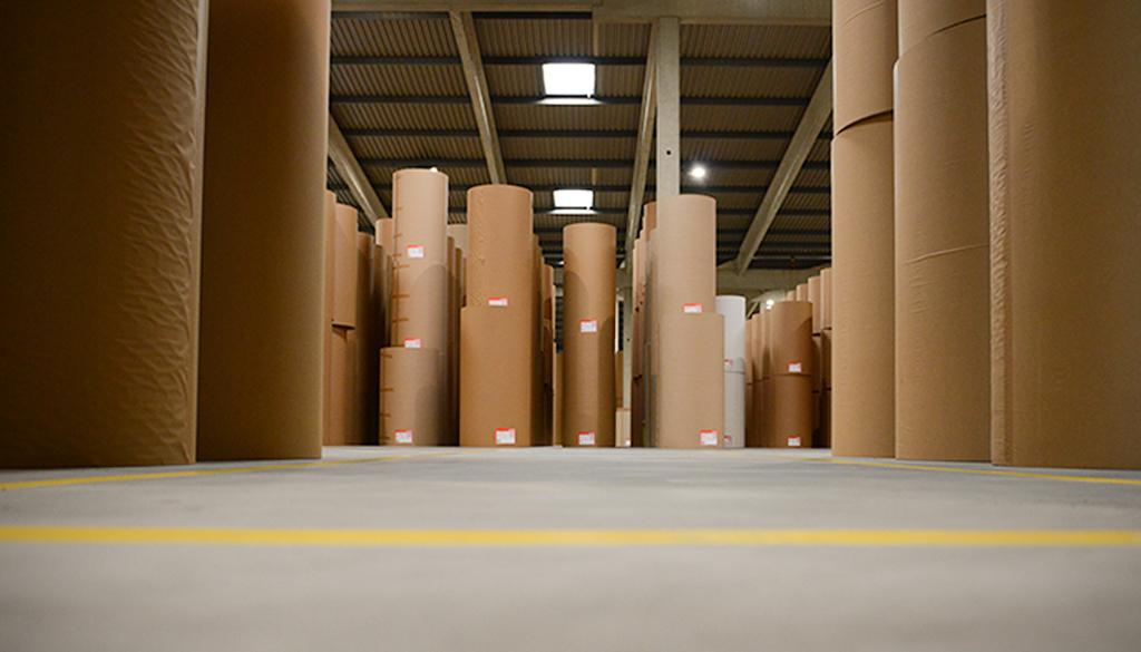 Verpackung_Papierrollen_Froschperspektive